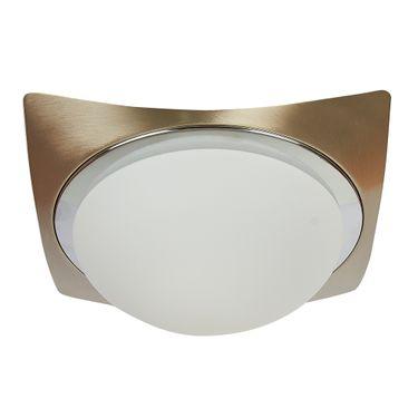plafon-satin-116174-lampara-de-techo-base-e27-19-47w-islandia-satinado-tecnolite87
